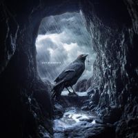 Rescue Raven by KateBloomfield