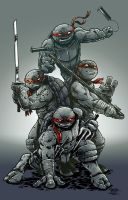 TMNT Original by johnraygun