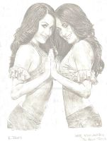 The Bella Twins by eazy101