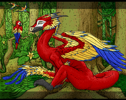 Macaw Dragon by Ciarra