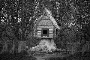 Little house by olgaFI
