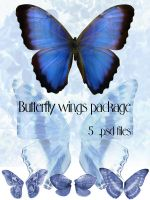 Butterfly wings package by Meltys-stock