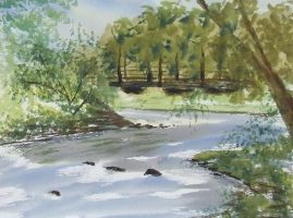 Big Brush Water colour 1 by meeart