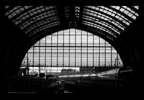 Central Station_Antwerp by vahu