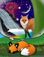 Stupid Fox Contest by crazywaffler