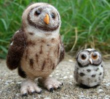 Needle Felted Owl Buddies by JessieDockins
