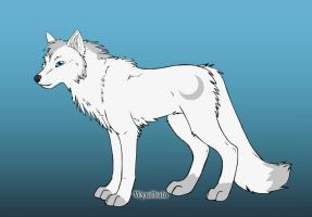 Wolf OC- Shiro by Coraline15