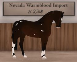 Nevada Warmblood 238 by BRls-love-is-MY-Live