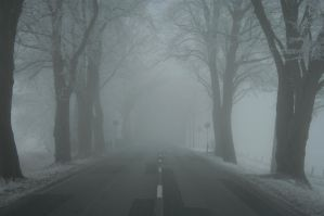 Winter road by SashaBels