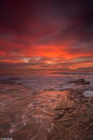 Wollongong City Sunrise by TahaElraaid