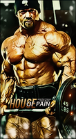 No pain,No gain by Red-wins