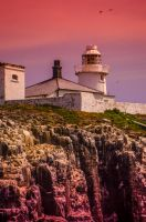 Farne Lighthouse by Wayman
