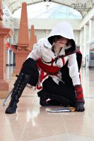 Novice Assassin cosplay by Zelvyne