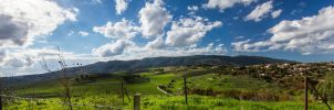 North Israeli Landscape by Delahkel