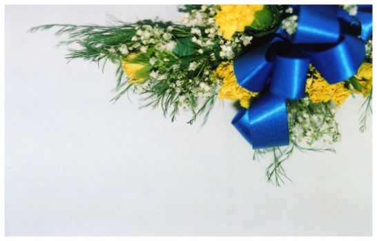 NHS corsage by ang3l1ite23