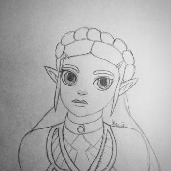 Princess Zelda BoTW by LOZRocksmysocks77