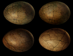 Dinosaur Dragon Egg stock by Rhabwar-Troll-stock