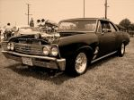 Blown Chevelle Sepia by StallionDesigns