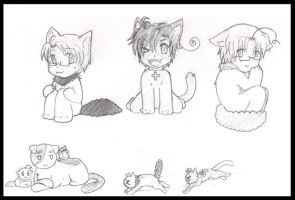 APH_+North America KittyTrio+ by Lil-lamb90