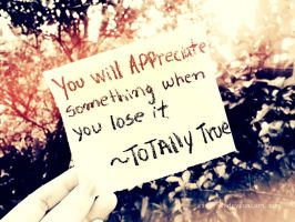 You Will Appreciate Something When... by Sireysi