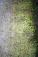 Mossy Cloth 03 by goodiebagstock