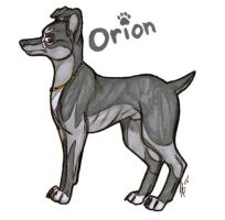 Avyris Trade- Orion by wolfen89