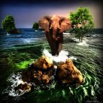 ~In A Elephants Dream~ by ICMDesigned