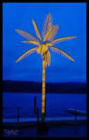 Palm at the Tiki by CapnSkusting