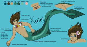 Kalei Akanu Official Reference Sheet by Vantani