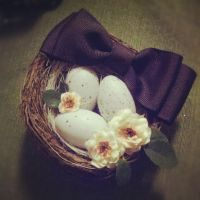 Bird Nest Hair Accessory by sweetmildred