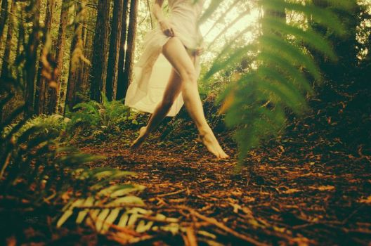 Enchanted Forest by melannc