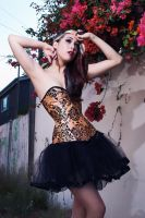 Sugar Kitty corsets by SubtleRomance