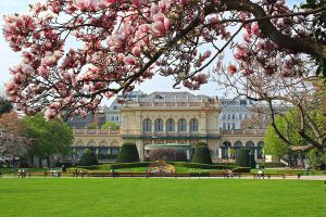 Stadtpark with Magnolias by AgiVega