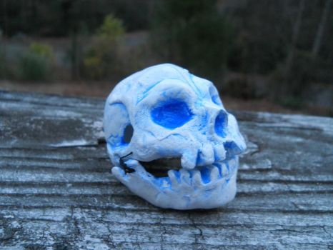 Little skull by GuyBellington753