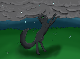 Stand in the Rain by LostKitten915