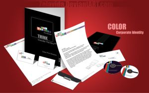 Color Corporate Identity by Zelavida