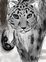 Snow Leopard by UmbraTigris