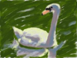 DSi Art Academy: The Swan by VATalbot