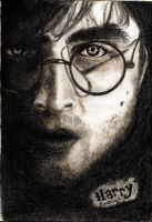 Harry Potter by LoveBBug