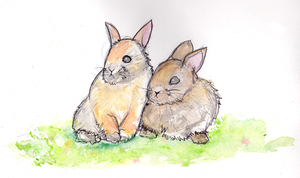 Bunnies by coffeeatthecafe