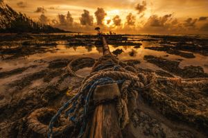 Sail Wreck by Delton36712