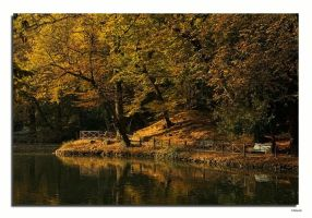 Autumn in the park Monza by fireman55
