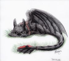 Toothless by copperagon