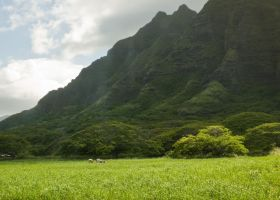 Hawaii Eastern Shore 3 by megamandos
