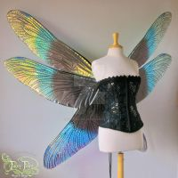 Giant Dragonfly Iridescent Fairy Wings by FaeryAzarelle