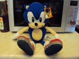 Sonic Plushie Again by DazzyDrawingN2
