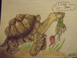 I bringed you a flower... by riverTurtle790