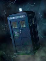 Tardis Reality by torgan-art