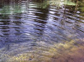 Pond Texture Ten by gabbyred