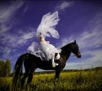 Horseman by photoport